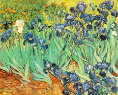 11 ноября Картина Ван Гога «Ирисы» продана за рекордную сумму — 53,6 млн долларов