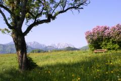 1 марта Праздник прихода весны