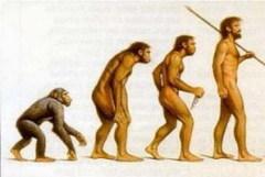 23 ноября В продаже появился труд Чарльза Дарвина «Происхождение видов»
