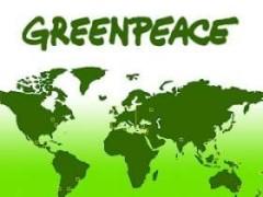 15 сентября День рождения экологической организации «Гринпис»