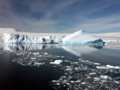 27 января Открытие Антарктиды