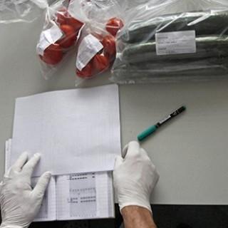 Генпрокуратуру подключат к борьбе с «лжесертификаторами»