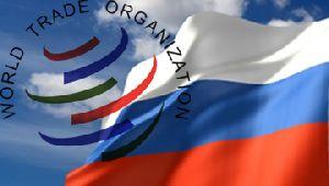 Россия в ВТО: за и против