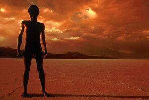 Уссурийский ученый предлагает путь спасения землян