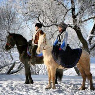 Новое развлечение уссурийцев: охота по-царски на лошадях и с русскими борзыми