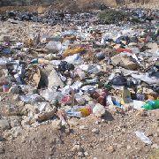 Под Уссурийском китаец вместо овощей вырастил гору мусора