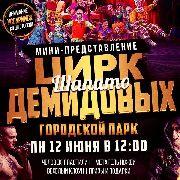 В честь празднования Дня России Цирк-шапито Демидовых даст бесплатное мини-представление в городском парке Уссурийска 12 июня в 12-00