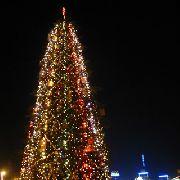 Уссурийск, скорее всего, останется на Новый год без главного украшения