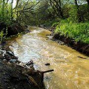 Уссурийск окружают «очень грязные» и «экстремально-грязные» реки