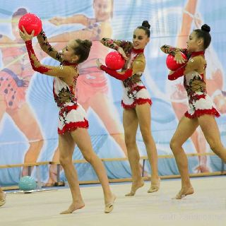 Гимнастки из Уссурийска победили на Первенстве края