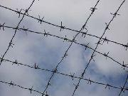 В Уссурийске задержан подозреваемый, убивший пенсионера
