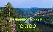В управление градостроительства УГО в феврале за Дальневосточным гектаром обратились 105 россиян