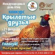 "Конкурс ""Крылатые друзья"""