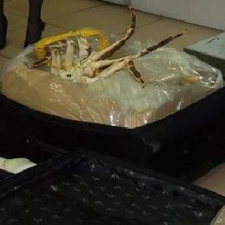 В Уссурийске пресечена незаконная торговля крабом
