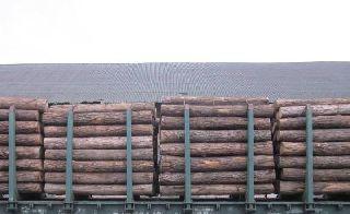 Уссурийские таможенники задержали более 187 кубометров дуба монгольского