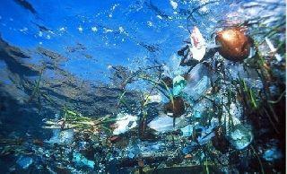 В Госдепе считают, что к 2050 году пластика в океане будет больше, чем рыбы