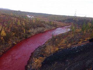 Река в Норильске стала багровой