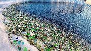 Английская газета Daily Mail с восторгом рассказала про пляж Стеклянный под Владивостоком