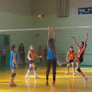 Краевой турнир по волейболу среди детских команд состоялся в Уссурийске (4 фотографии)