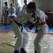 Юные спортсмены встретились в Уссурийске на соревнованиях по джиу-джитсу (3 фотографии)