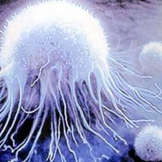 Российские ученые придумали, как обнаружить рак при помощи смартфона