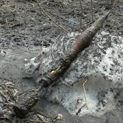 В 120-квартирном жилом доме Уссурийска обнаружен снаряд (10 фотографий)