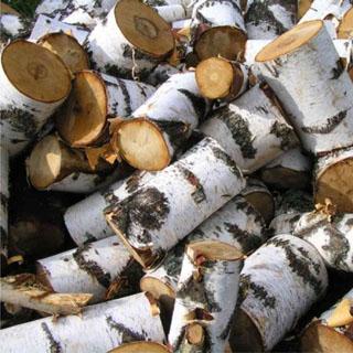 К зиме селяне будут обеспечены дровами