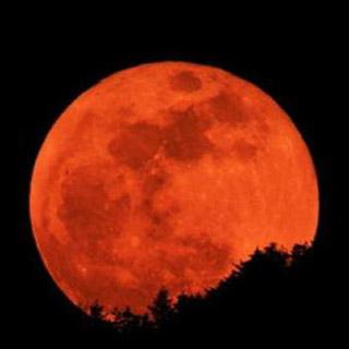 Жители Уссурийска в ночь со среды на четверг смогут увидеть «кровавую Луну»
