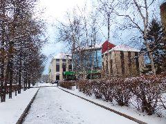 Начало весны. Улица Плеханова (автор Галина Николайчук)